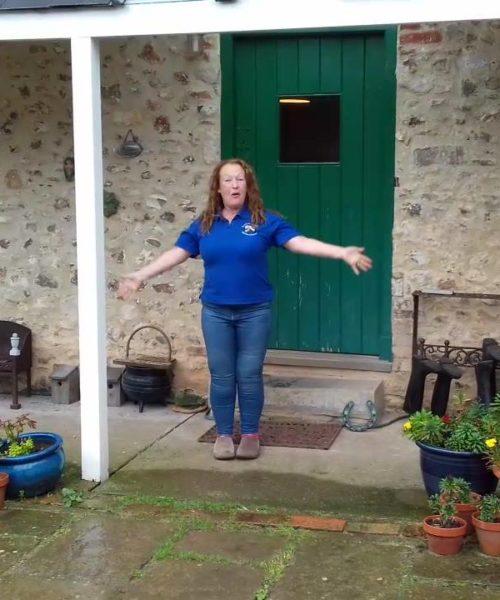 Munchkins Miniature Shetland Rescue grant programme